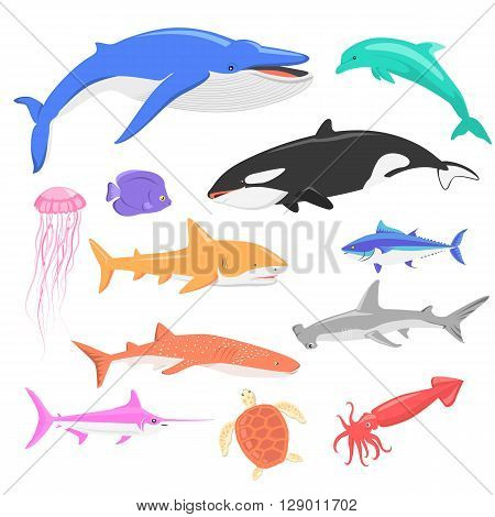 Marine fauna set of aquatic animals. Aquatic fauna, ocean or sea fish wildlife fauna, underwater aquarium exotic life fauna, dolphin water wild vector illustration isolated on white