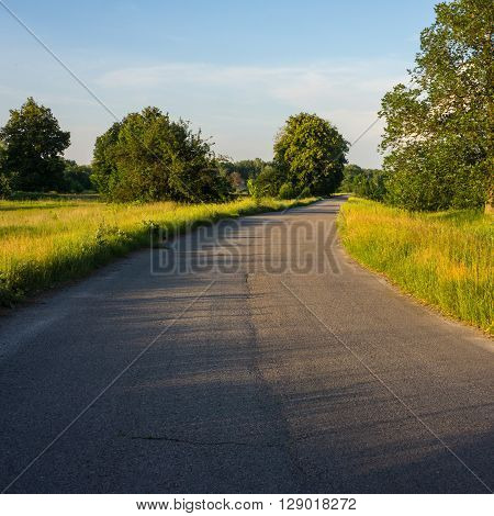 asphalt road in the countryside spring landscape