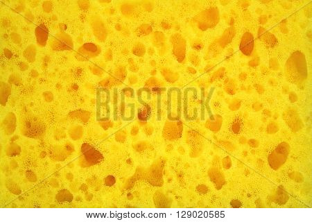 Yellow Sponge Surface Abstract Background Close Up