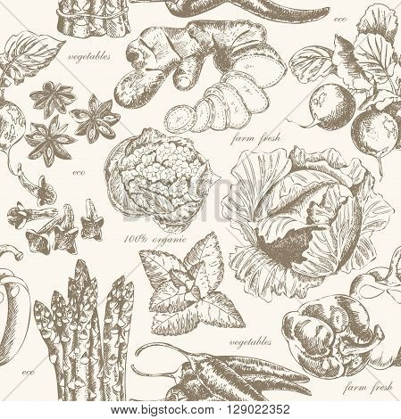 Seamless pattern with fruit and spices in vintage style. Vector background with cabbage, radish, chili, asparagus, sweet pepper, ginger, cauliflower and anise for scrapbook, poster, postcard.