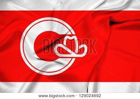 Waving Flag of Calgary, with beautiful satin background.