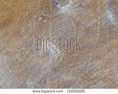 texture sawn wood with his unique natural drawings