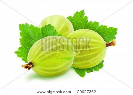 Heap of fresh ripe green gooseberry berries with leaves isolated on white background. Design element for product label, catalog print, web use.