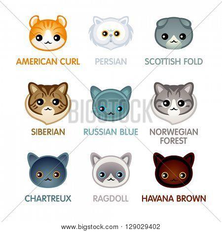 Kawaii cat breed head icons, set II