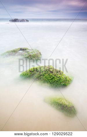 Stones covered with moss and algae. Long exposure shot taken Cadiz coast Spain.