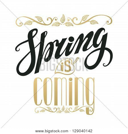 Spring design, Handwriting lettering, quotes.Vintage vector Spring is coming.Spring season, springtime wallpaper, text.Vector spring calligraphic.Vintage spring web.Spring art in black and gold.Retro Illustration