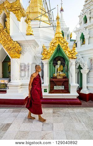 Yangon Myanmar - January 9 2012: A monk walking in the Swedagon Pagoda.