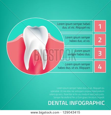 Human tooth dental infographic. Editable illustration with healthy white tooth. Medical image in green, pink and dark blue colors on a light green background.