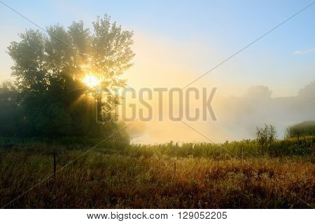 Crepuscular Rays Through the Fog Near a Pond by the Rice Creek North Regional Trail in Shoreview Minnesota