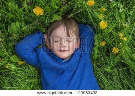 adorable child daydreaming in a field of flowers
