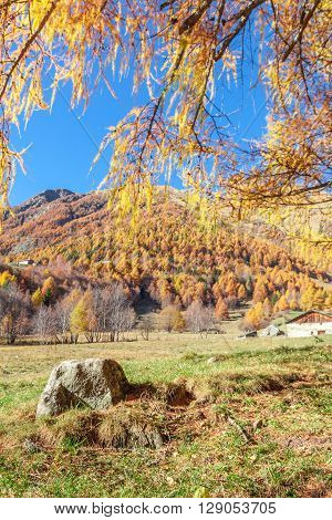 Isolated Stone And An Autumnal Panorama In The Italian Alps Behind A Fence