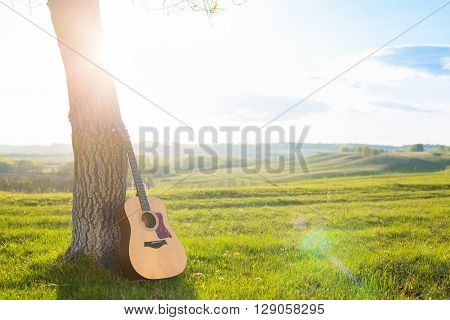 Classical Guitar Propped Against A Tree Trunk