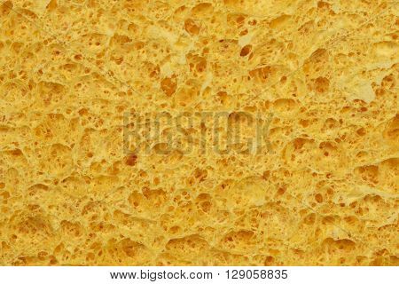 Textured surface of the porous yellow sponge close-up. For background.