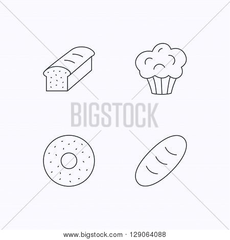 Muffin, donut and toast bread icons. Fresh bread linear signs. Flat linear icons on white background. Vector