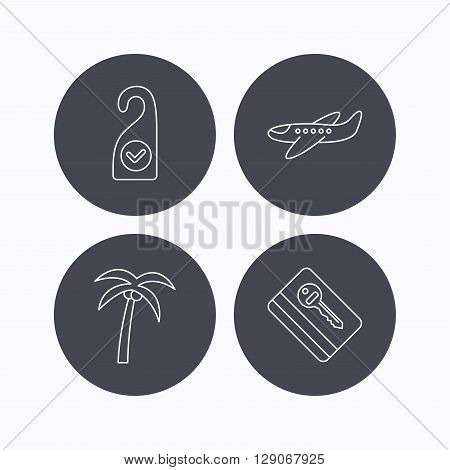 Palm tree, air-plane and e-key icons. Clean room linear sign. Flat icons in circle buttons on white background. Vector