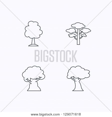 Pine tree, oak-tree icons. Forest trees linear sign. Flat linear icons on white background. Vector