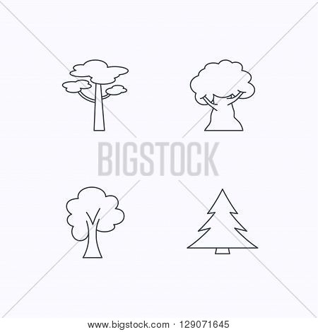 Pine tree, maple and oak-tree icons. Forest trees linear signs. Flat linear icons on white background. Vector