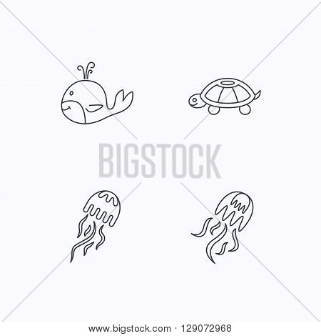Turtle and jellyfish  icons. Whale linear sign. Flat linear icons on white background. Vector