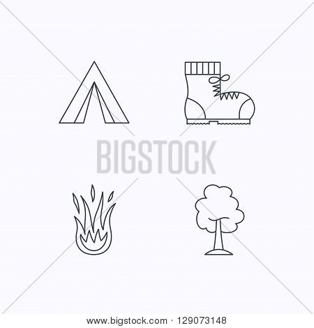Maple tree, camping tent and hiking boots. Fire flame linear sign. Flat linear icons on white background. Vector