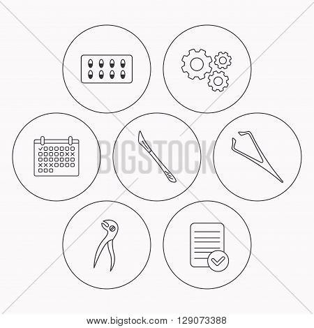 Scalpel, capsules and dental pliers icons. Eyebrow tweezers linear sign. Check file, calendar and cogwheel icons. Vector