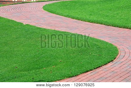 trail in S shape curve in the green lawn