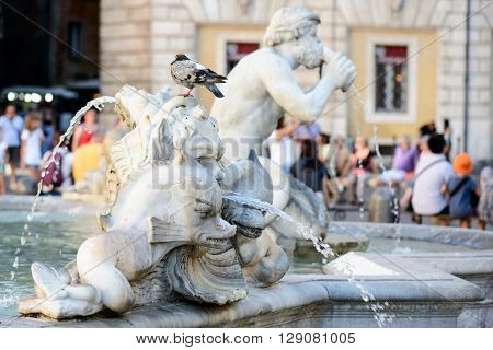 particular of the fountain del Moro. is a fountain located at the southern end of the Piazza Navona in Rome Italy. The fountain was originally designed by Giacomo della Porta in 1575 with the dolphin and four Tritons.
