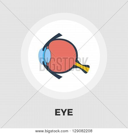 Anatomy eye icon vector. Flat icon isolated on the white background. Editable EPS file. Vector illustration.
