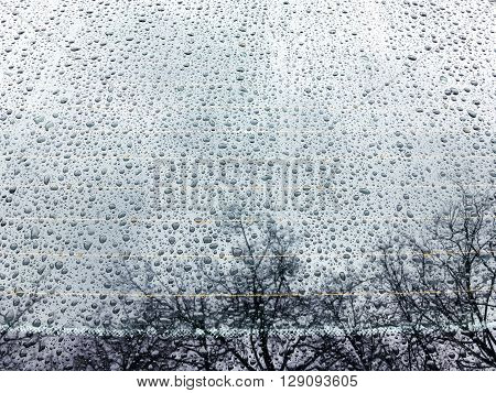 Raindrops On A Car Window With Trees Reflections Against A Cloudy Sky