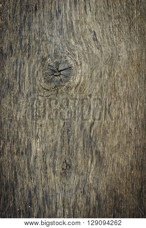 Old wood texture. It can be used as a background
