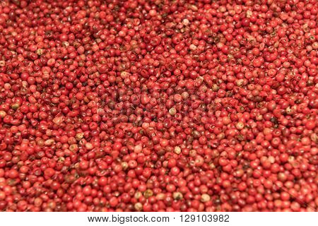 close up of red pepper background texture