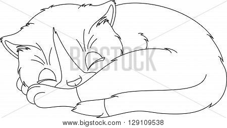 Cute kitten sleeping on a white background, coloring page
