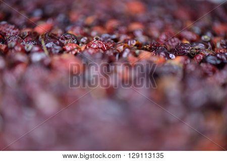 Dried Rosehip Berries
