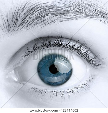 Macro image of wide open blue eye, black and white photo