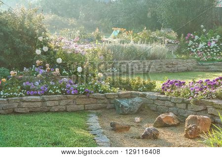 Beautiful blooming garden in the first rays of sun on a summer morning