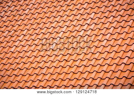 A Pattern  Line Of Traditional Style Roof