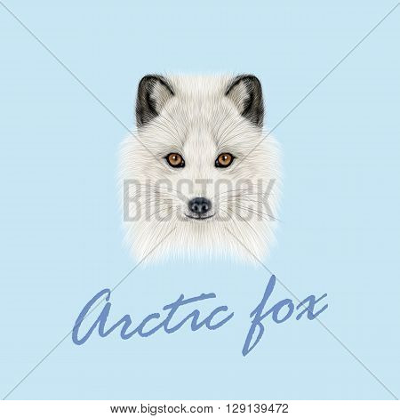 Vector Illustrated Portrait of Arctic fox. Cute white fluffy face of Polar Fox on blue background.