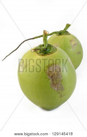 fresh young coconut fruit on white background