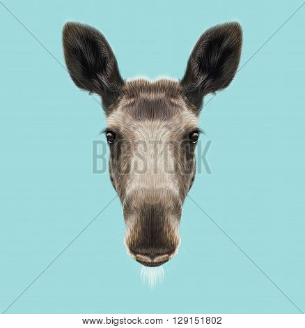 Illustrated Portrait of Moose. Cute face of forest elk on blue background.