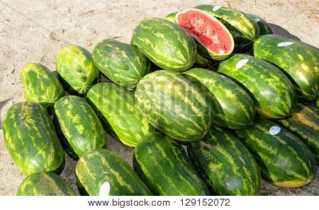 Water Melons for sale at outdoor market place.