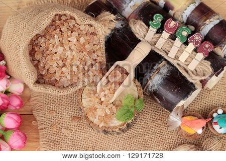 Cane sugar and fresh cane from nature