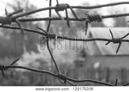 barbed wire fence razor blue sky clouds