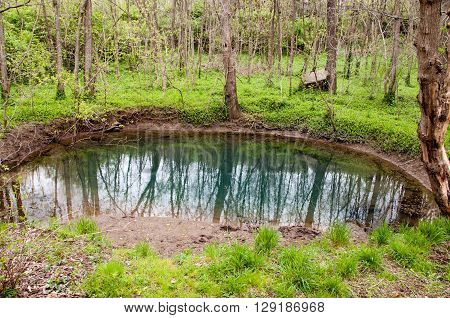 A blue hole at McConnell Springs in Lexington Kentucky. ** Note: Visible grain at 100%, best at smaller sizes