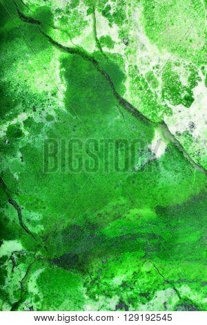 green colored jasper texture macro photo