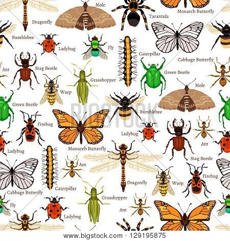 Insects Seamless Pattern. Insects Flat Vector Illustration. Insects Decorative Design.  Insects Elements Collection.