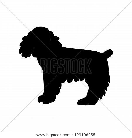 Flat cocker spaniel pet illustration. Standing cute dog vector. Flat dog animal pet vector icon. Home cartoon standing cocker spaniel in flat style. Dog colorful silhouette isolated on white background