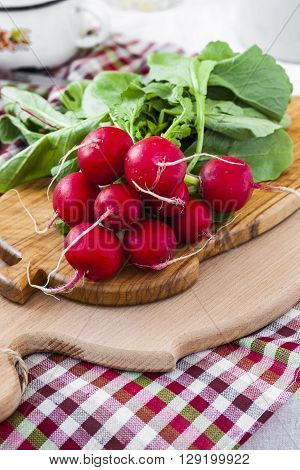 bundle of bright fresh organic radishes with leaves in rustic style