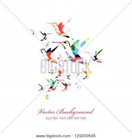 Vector illustration of colorful hummingbirds isolated on white