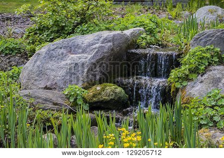 Small waterfall with yellow flowers in autumn park