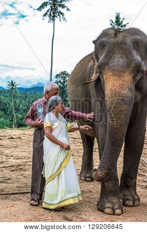 Pinnawela Sri Lanka - December 9 2012: A local elderly couple in the Elephant Nursery