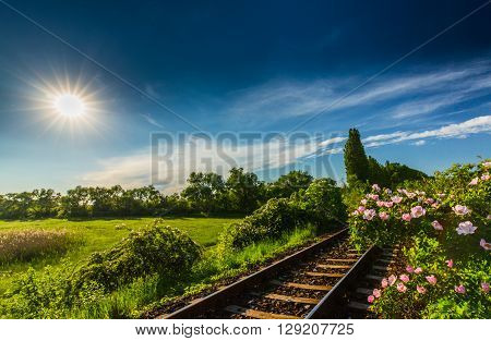 Scenic railroad in remote rural area in summer